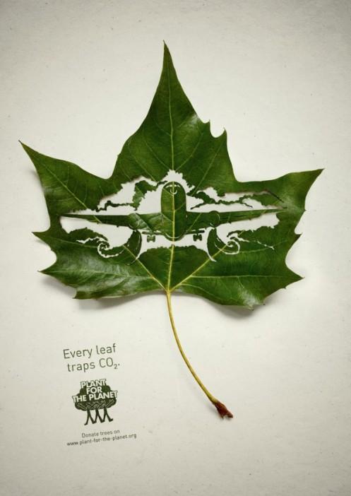 LeafPlane